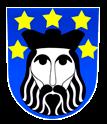 logo firmy Obec Svatý Jan nad Malší