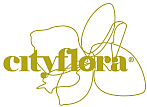 logo firmy City Flora