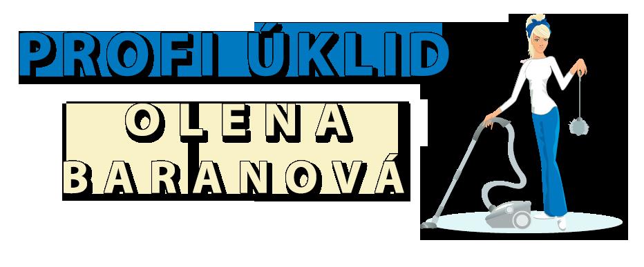 logo firmy PROFI ÚKLID - KOMINICTVÍ & KRBY-KAMNA, s.r.o.
