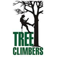 logo firmy TREECLIMBERS s.r.o.