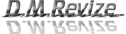 logo firmy D. M. Revize