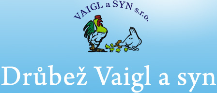 logo firmy VAIGL A SYN