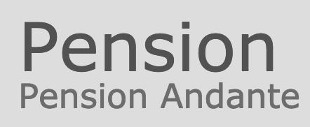 logo firmy ANDANTE PENZION