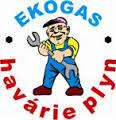 logo firmy Jan Špaèek - Ekogas
