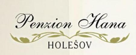 logo firmy PENZION HANA