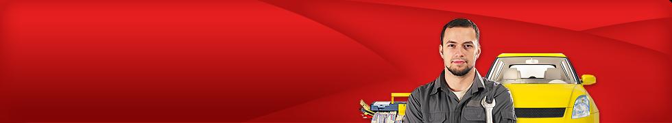 logo firmy TEAM MAAT