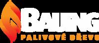 logo firmy BAUING - CZ, s.r.o.