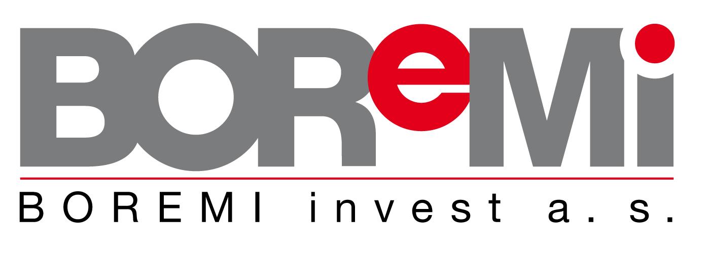 logo firmy BOREMI INVEST