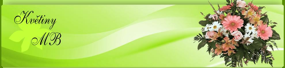 logo firmy MOVAB, s.r.o.
