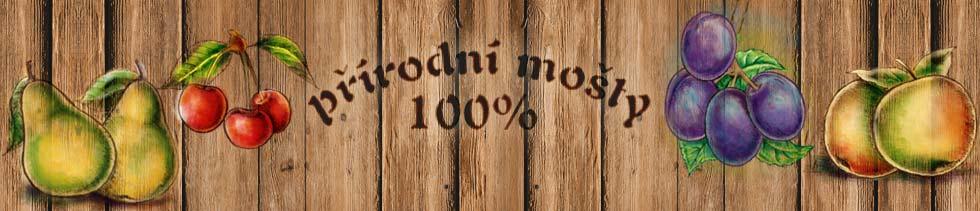 logo firmy PURAVITA - 100% pøírodní mošty