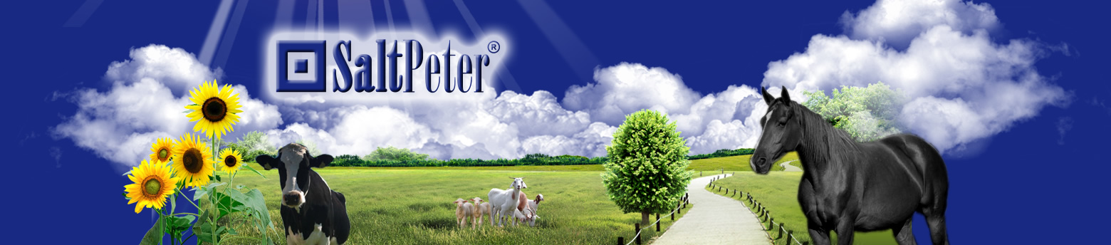 logo firmy Saltpeter s.r.o. - sklad sklad České Budějovice