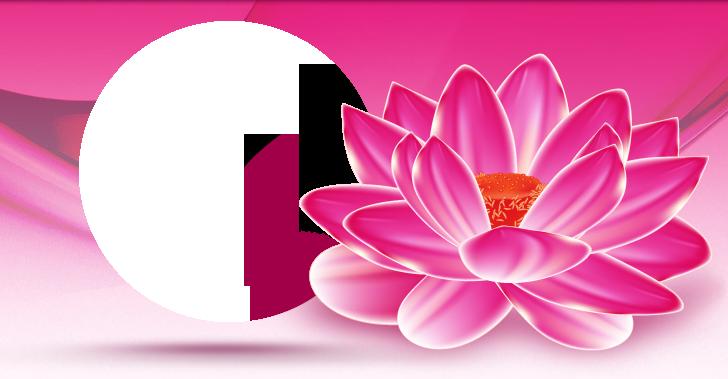 logo firmy MUDr. Miroslava Prùchová - estetická plastická chirurgie