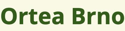 logo firmy ORTEA - ortopedické pomůcky