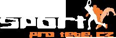 logo firmy LI-NING / SPORTPROTEBE.cz