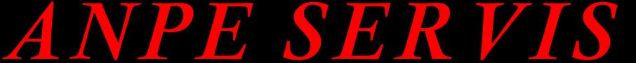 logo firmy ANPE SERVIS s.r.o.