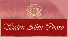 logo firmy Salon Allen Charo