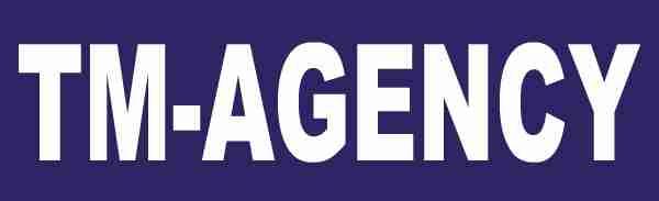 logo firmy Patentový zástupce - Doc. Ing. Jindøich Špaèek, CSc.