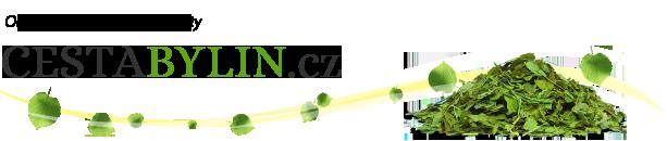 logo firmy CESTA BYLIN