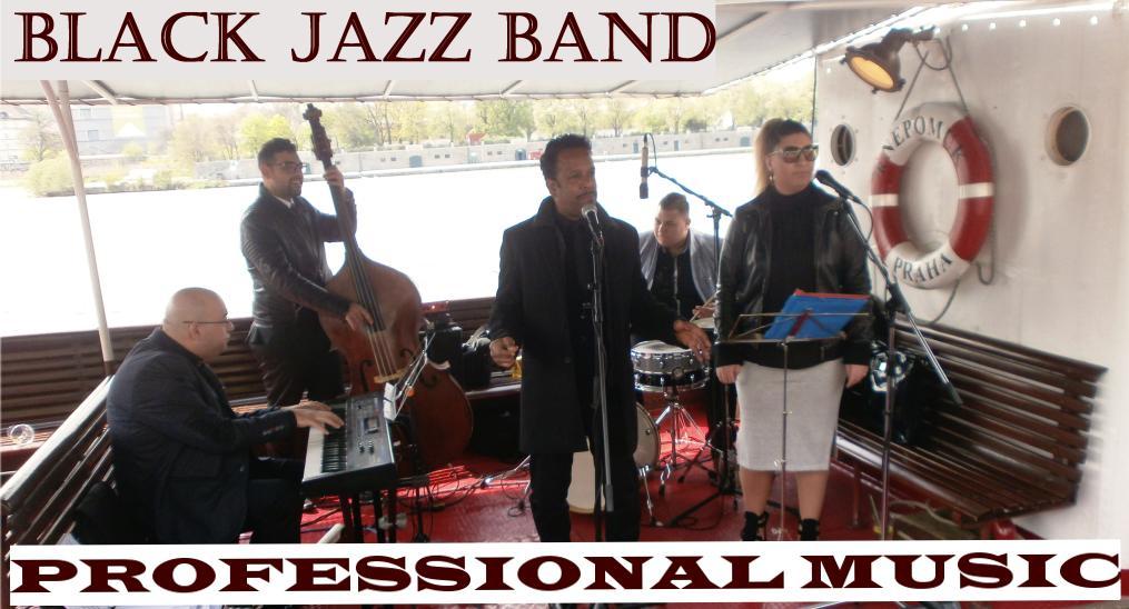 logo firmy Professional Music
