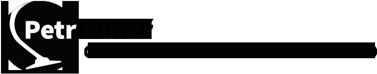 logo firmy Petr Pintíø - Elektromontáže, vysavaèe