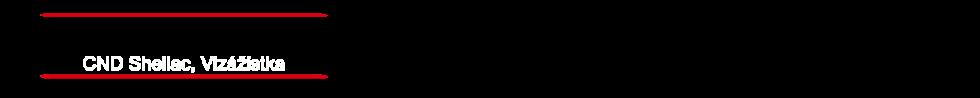 logo firmy Raw bistro Plzeò