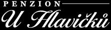 logo firmy Václav Hlavička