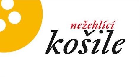 logo firmy Nežehlící košile - Jana Budská