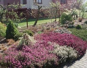 Zakládání zahrad  - Bc. Miloslav Pittner fotografie 1 z 4