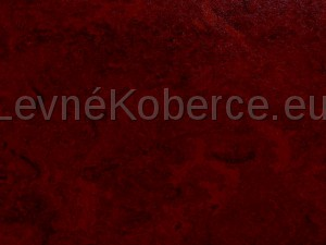 http://www.cesko-katalog.cz/galerie/falionet-plus-s-r-o-1454058584.