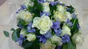 http://www.cesko-katalog.cz/galerie/kvetiny-jelinkova1516626667.