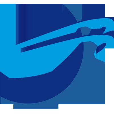 logo firmy DOUBLE INFORMATION