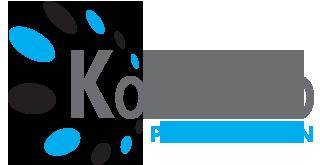 logo firmy KOVO-PRO POV݊IL ROMAN