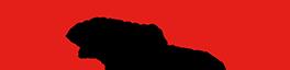 logo firmy KOKTAVÝ PETR-MONTÁŽ SUCHÝCH STAVEB A SÁDROKARTONŮ