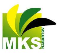 logo firmy Městské kulturní středisko Habartov