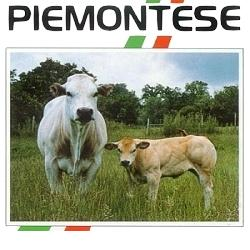 http://www.cesko-katalog.cz/galerie/zemedelskeho-druzstva-agroholding-se-sidlem-v-bernarticich1579855837.jpg