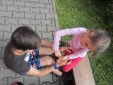 http://www.cesko-katalog.cz/galerie/zs-a-ms-bela-pod-pradedem1475479538.