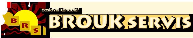 logo firmy BROUK servis s.r.o.