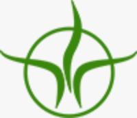 logo firmy OÁZA NATURA - LENKA TAUCHMANOVÁ