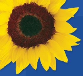 logo firmy Ubytovna Slunečnice