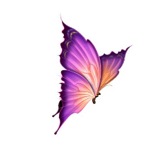 logo firmy Kosmetický salon Jitka