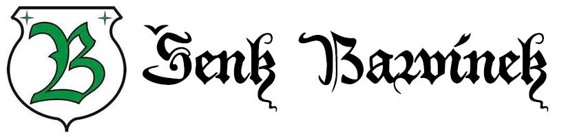 logo firmy ŠENK BARVÍNEK