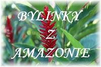 logo firmy BYLINKY Z AMAZONIE